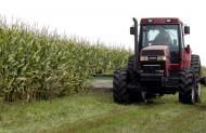 Rolnictwo i plan antykryzysowy