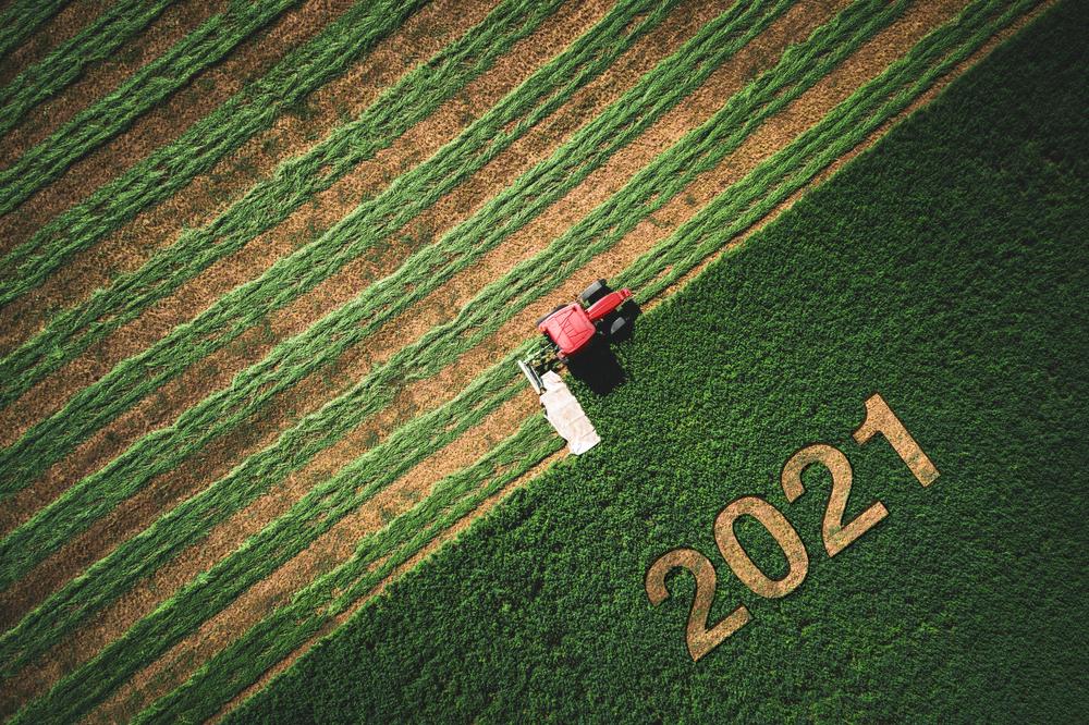 Składki KRUS - IV kwartał 2021 r. Termin płatności.