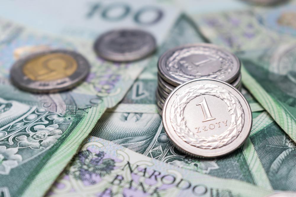 Sytuacja finansowa gmin zachodniopomorskich w 2019 r./ fot. Shutterstock