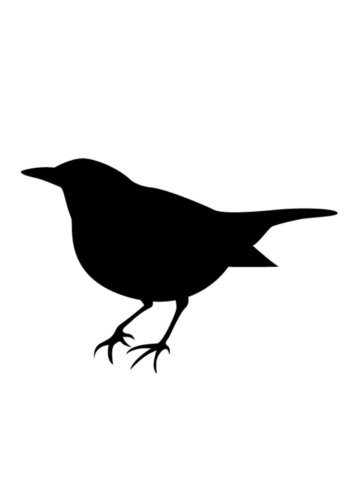 Darmowe Szablony Malarskie Ptaki Szablony Malarskie Pokój Dla